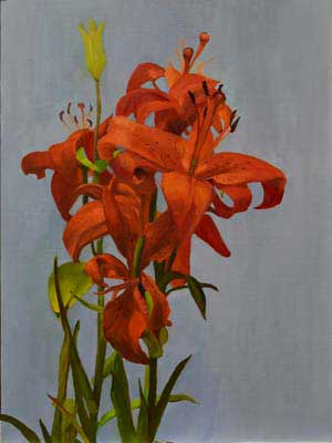 Day Lilies from David